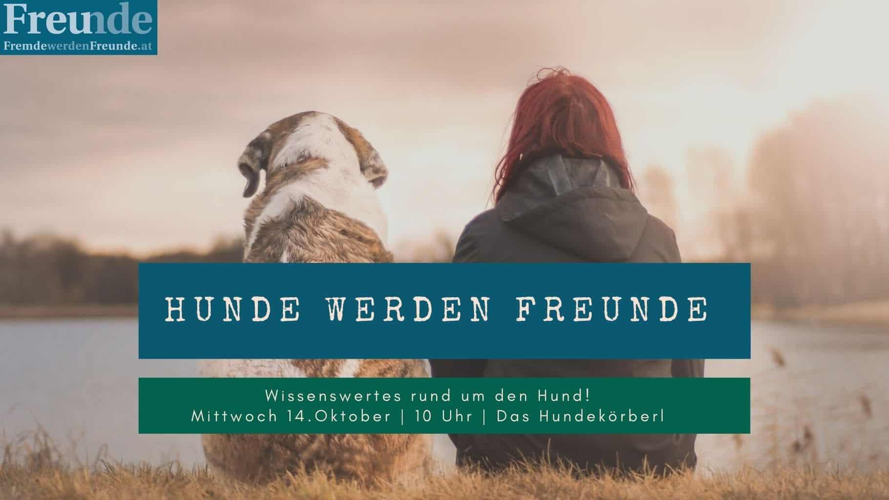 14.10. – Hunde werden Freunde